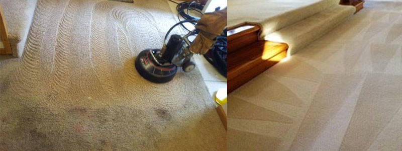 Carpet Cleaning Scotchy Pocket