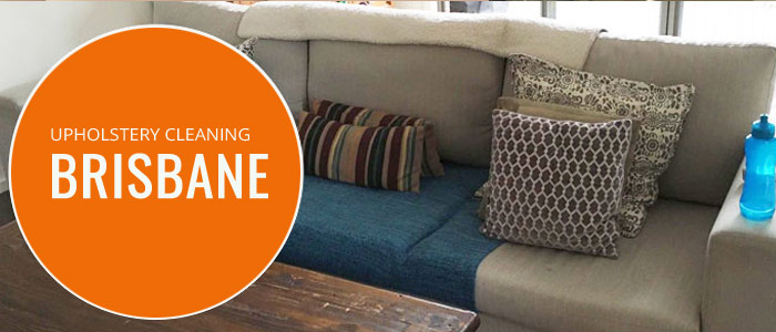 Professional Upholstery Cleaning Buddina