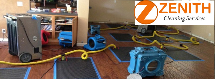 Carpet Water Damage Greenwood