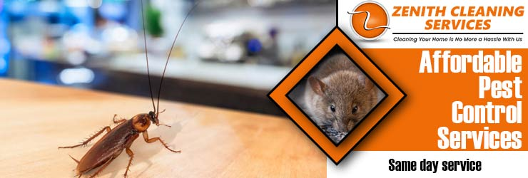 Affordable Pest Control Melbourne