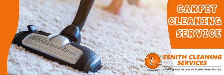 Carpet Cleaning Rogues Point