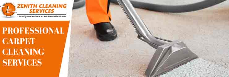 Professional Carpet Cleaning Molesworth