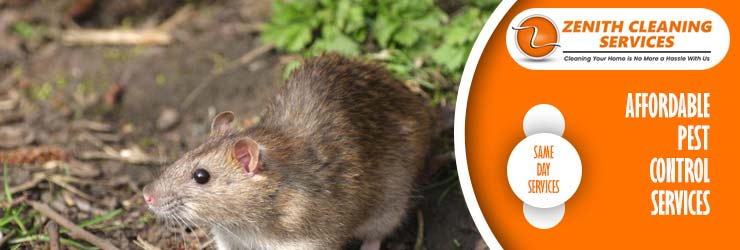Professional Pest Control Perth